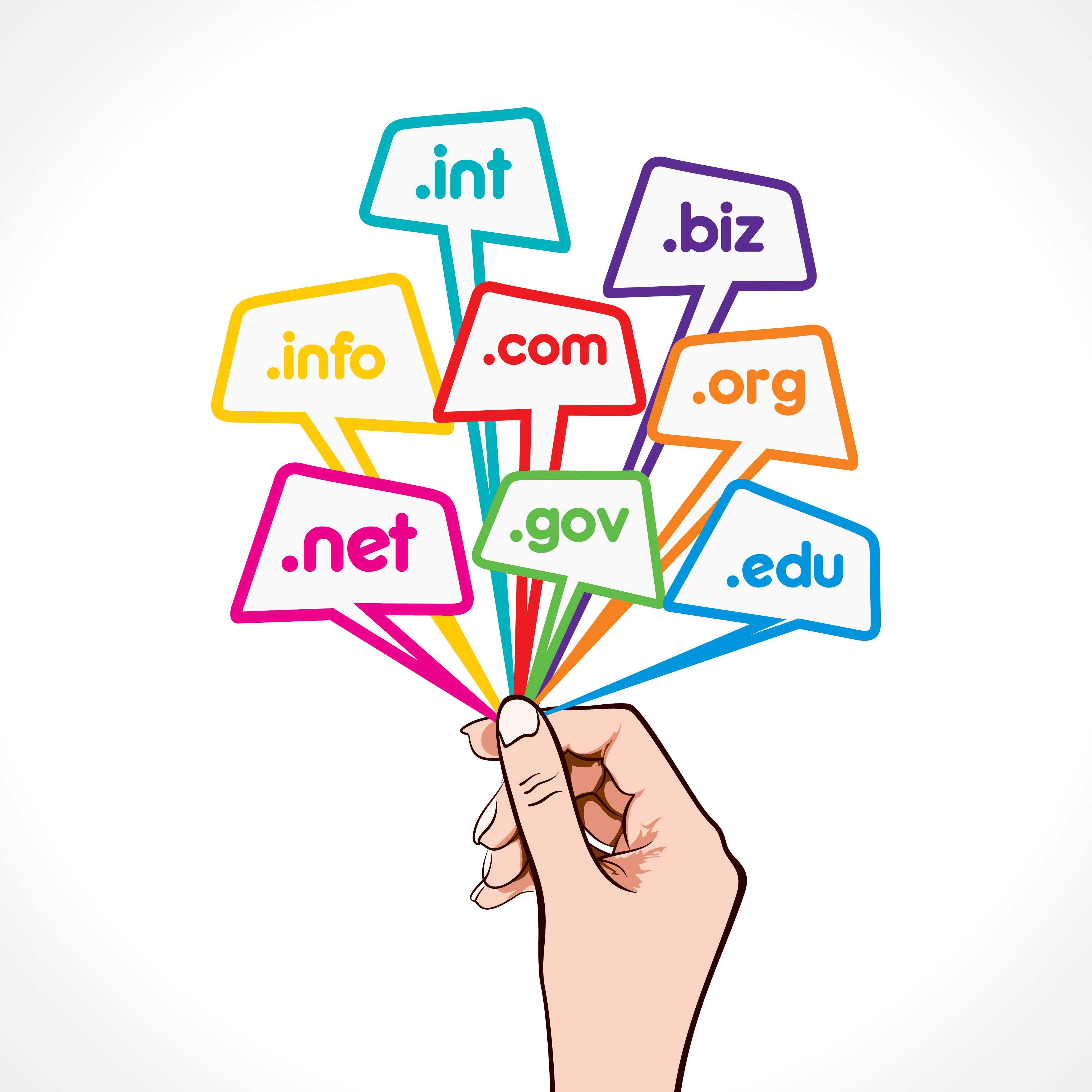 What is a domain and hosting: why are needed and how to choose 81